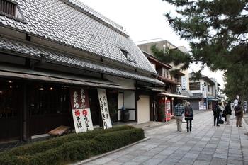 110326_NaraHouryuuji_05.JPG