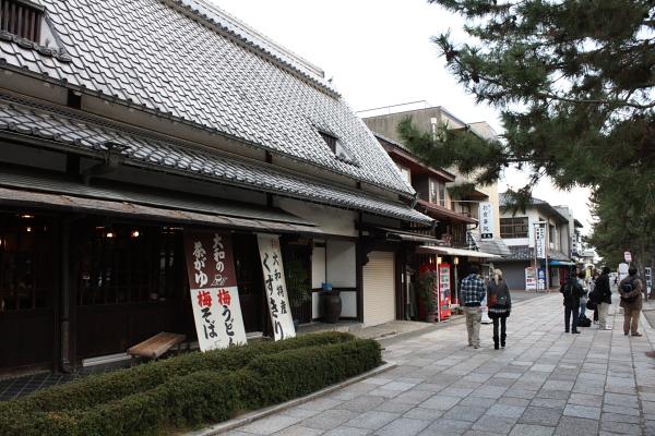 http://www.ndid.net/blog_ndid/image/110326_NaraHouryuuji_05.JPG