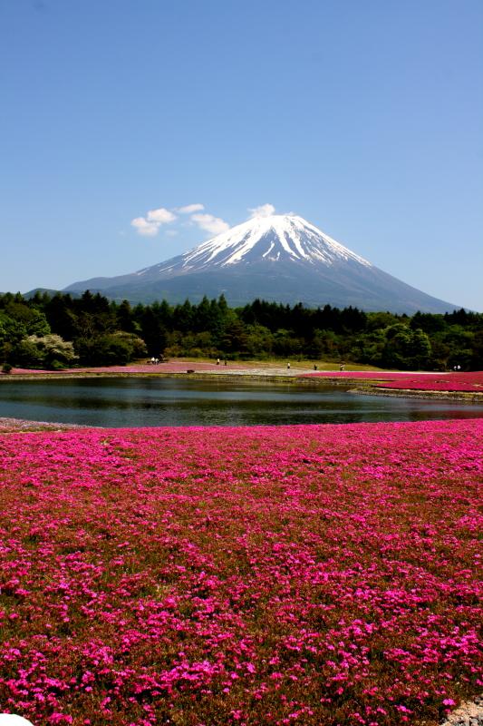 http://www.ndid.net/blog_ndid/image/120527_Fuji_04.JPG